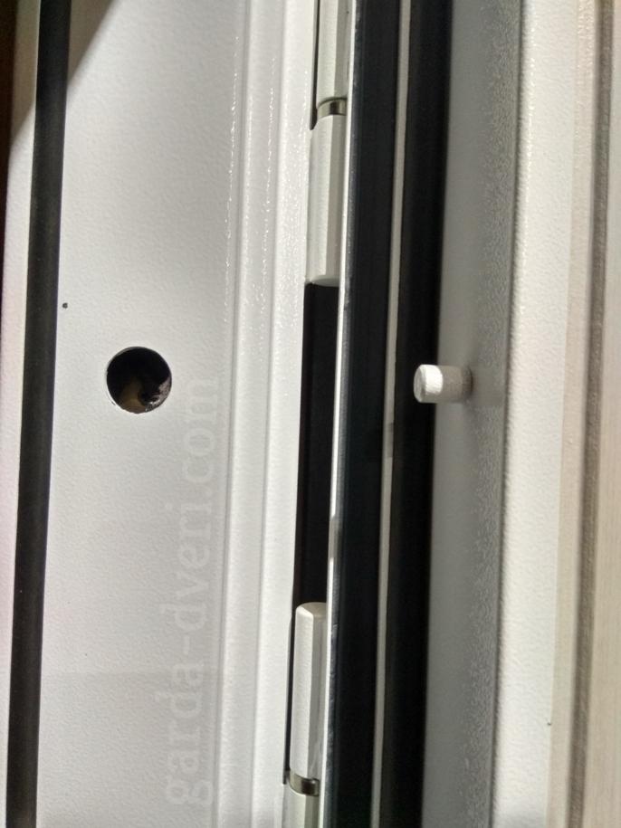 Двери Гарда S12 противосъемы